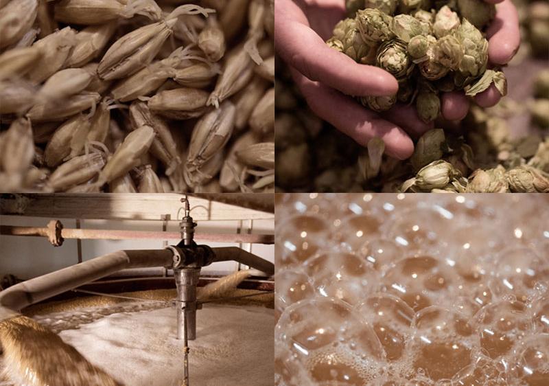 Produccion cerveza
